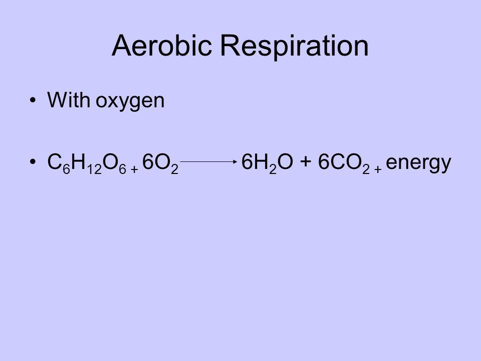 Aerobic Respiration With oxygen C6H12O6 + 6O2 6H2O + 6CO2 + energy