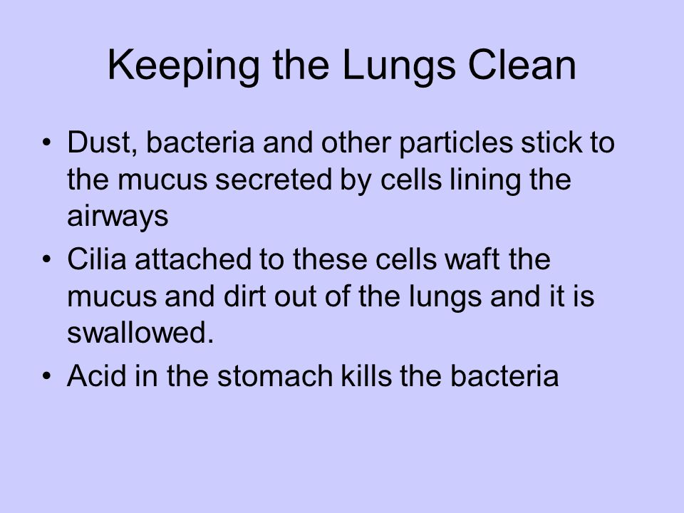Keeping the Lungs Clean