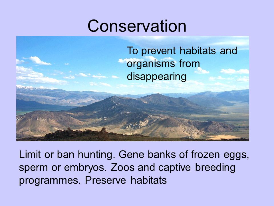 Conservation To prevent habitats and organisms from disappearing