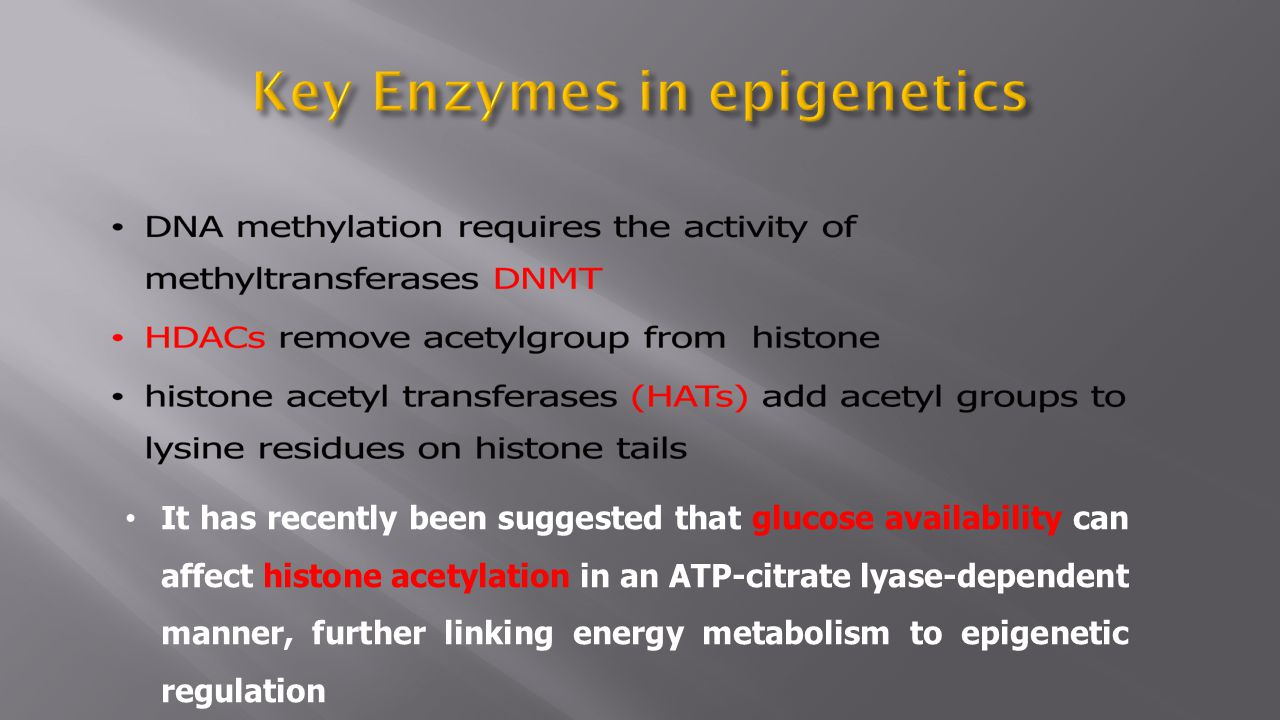 Key Enzymes in epigenetics