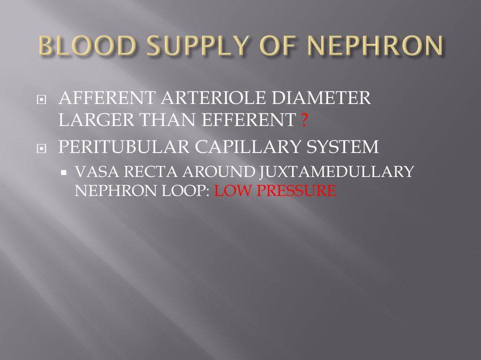 BLOOD SUPPLY OF NEPHRON