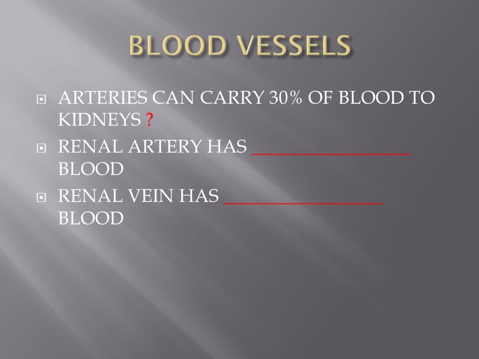 BLOOD VESSELS ARTERIES CAN CARRY 30% OF BLOOD TO KIDNEYS
