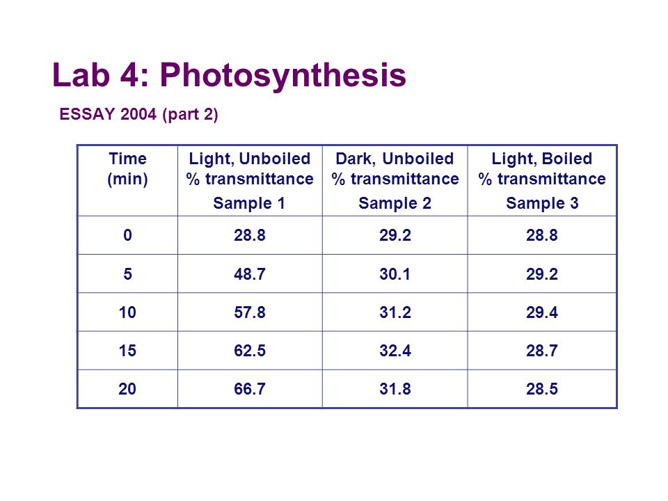 Lab 4: Photosynthesis ESSAY 2004 (part 2) Time (min)
