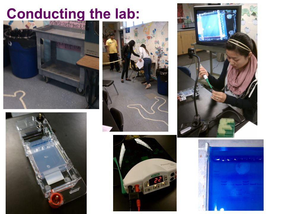 Conducting the lab: