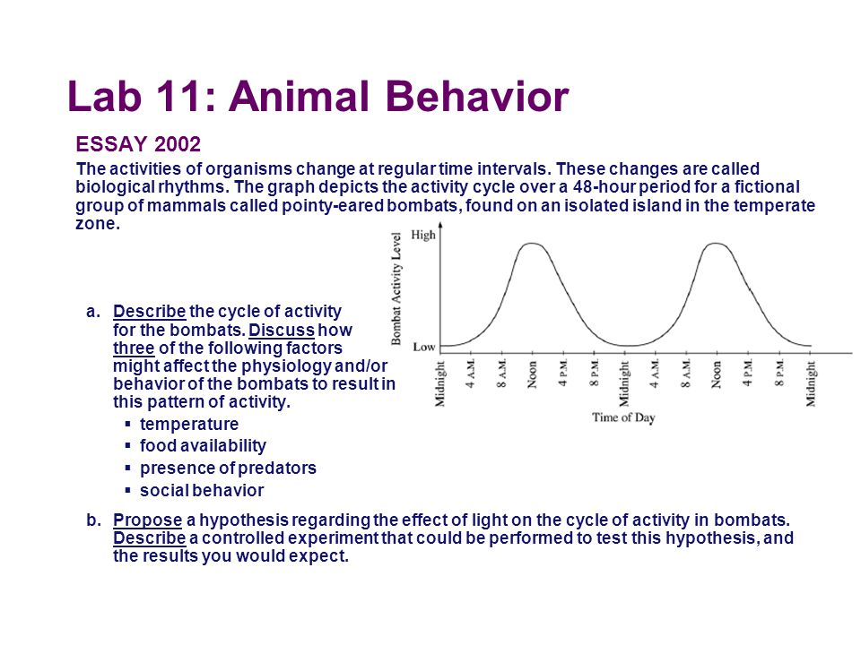 Lab 11: Animal Behavior ESSAY 2002