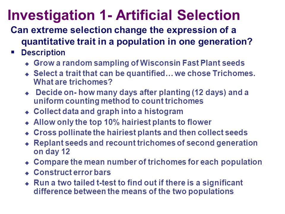 Investigation 1- Artificial Selection