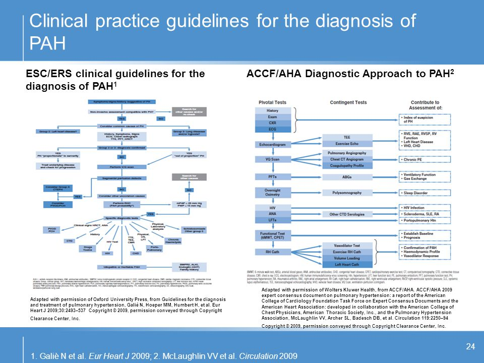 Clinical practice guidelines for the diagnosis of PAH