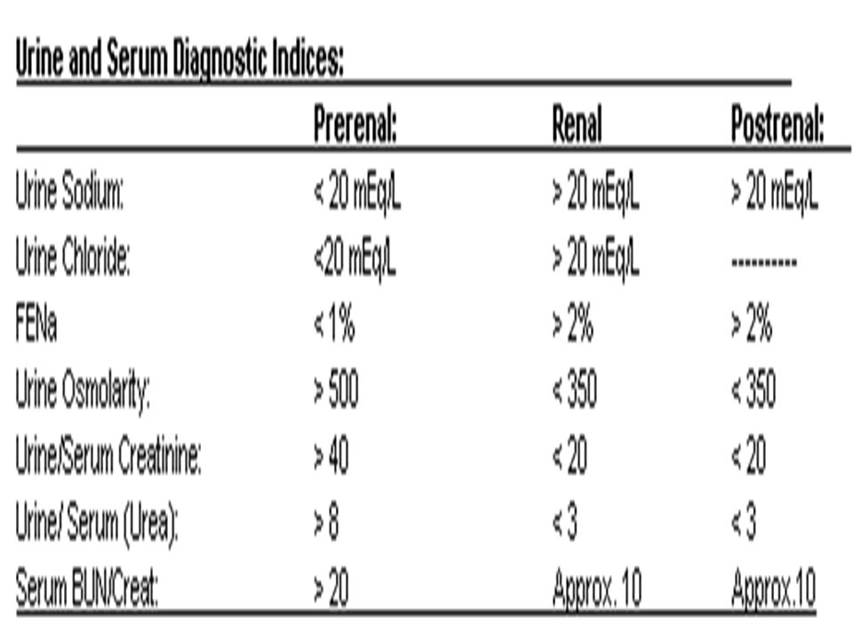 Laboratory Findings in the Differential Diagnosis of Acute Renal Failure: