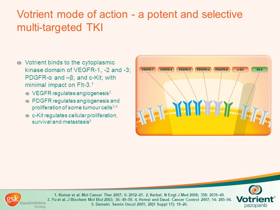 Votrient mode of action - a potent and selective multi-targeted TKI