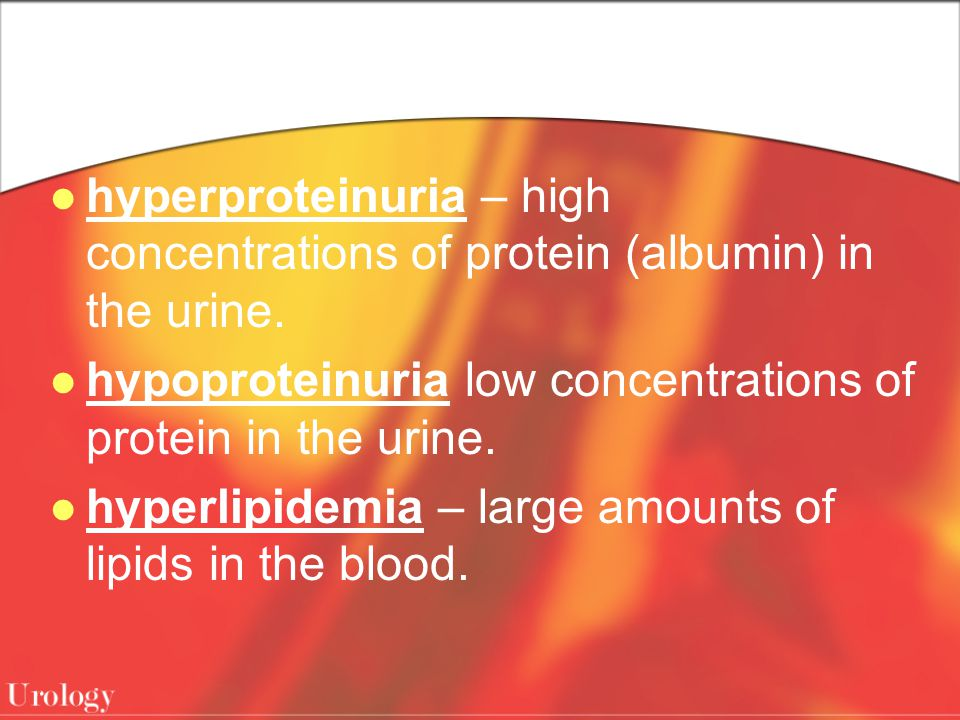 hyperproteinuria – high concentrations of protein (albumin) in the urine.
