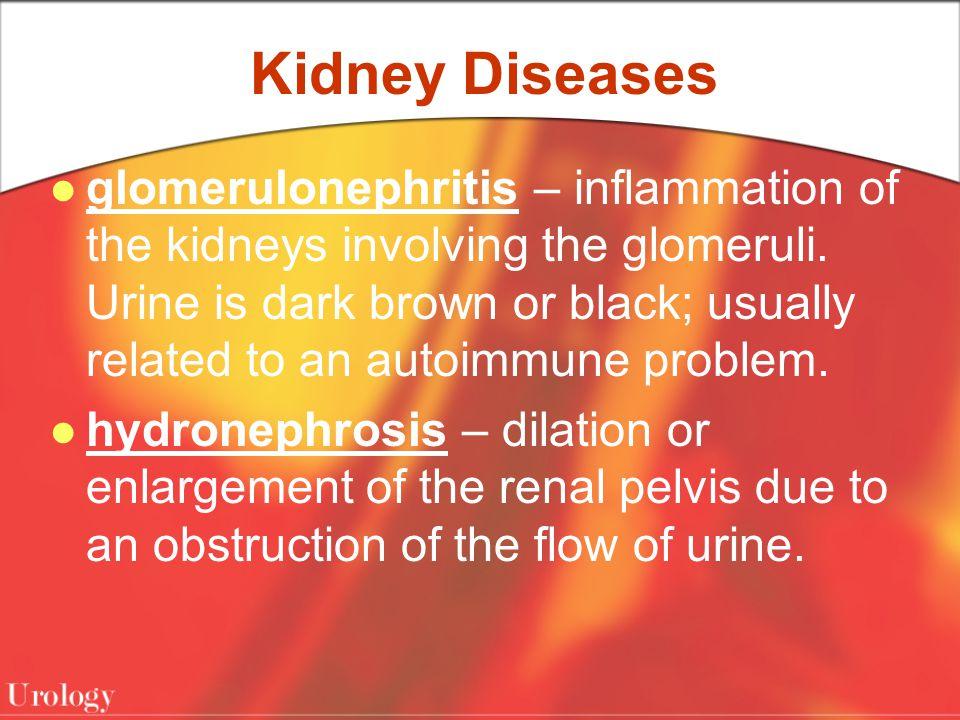 Kidney Diseases
