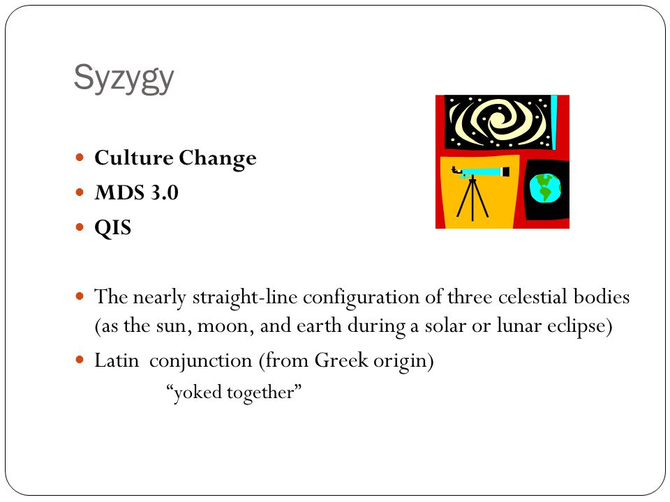Syzygy Culture Change MDS 3.0 QIS
