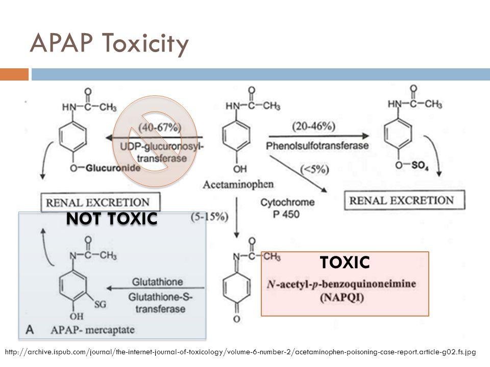 APAP Toxicity NOT TOXIC TOXIC