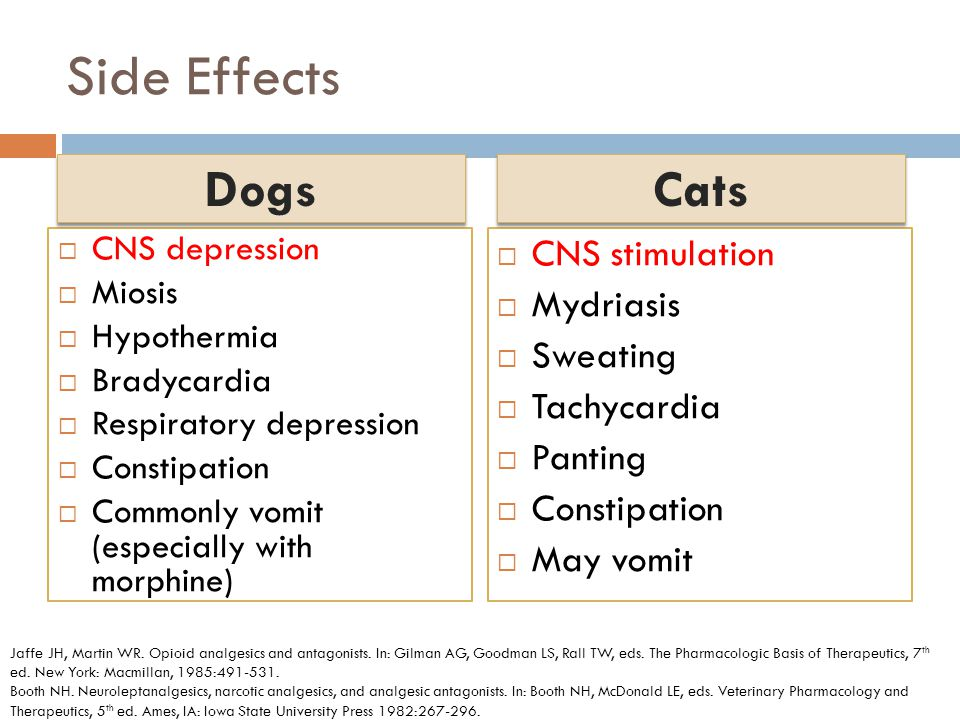 Side Effects Dogs Cats CNS stimulation Mydriasis Sweating Tachycardia