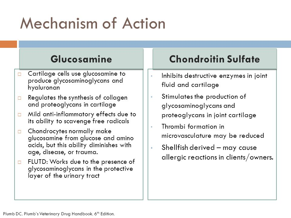 Mechanism of Action Glucosamine Chondroitin Sulfate