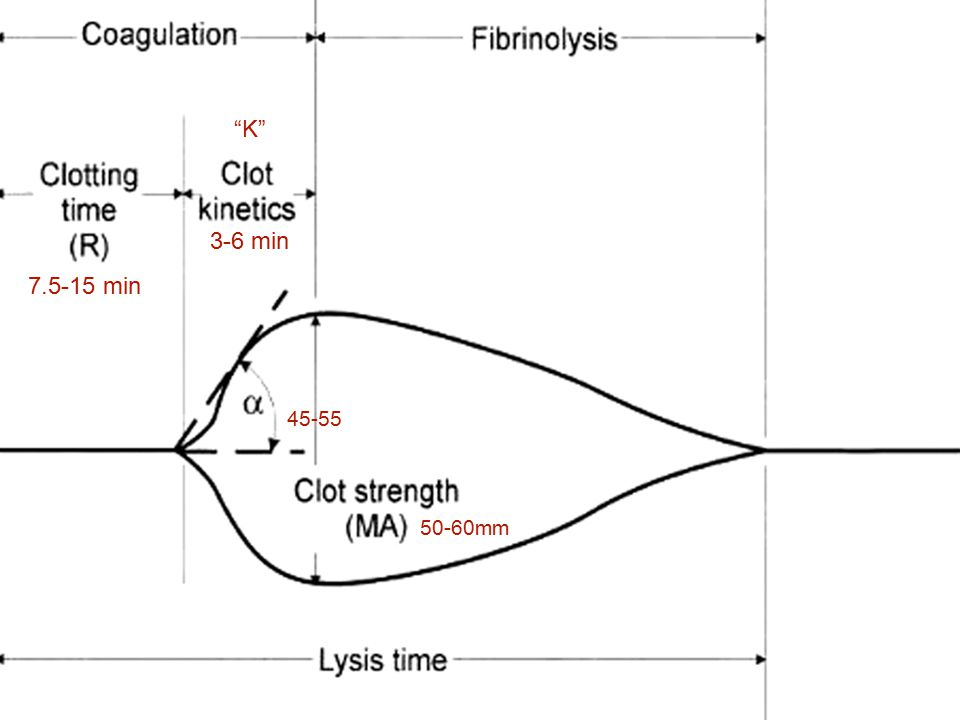 K 3-6 min. 7.5-15 min. 45-55. (R)- Reaction time. Represents the START of the clot. Fibrin formation.