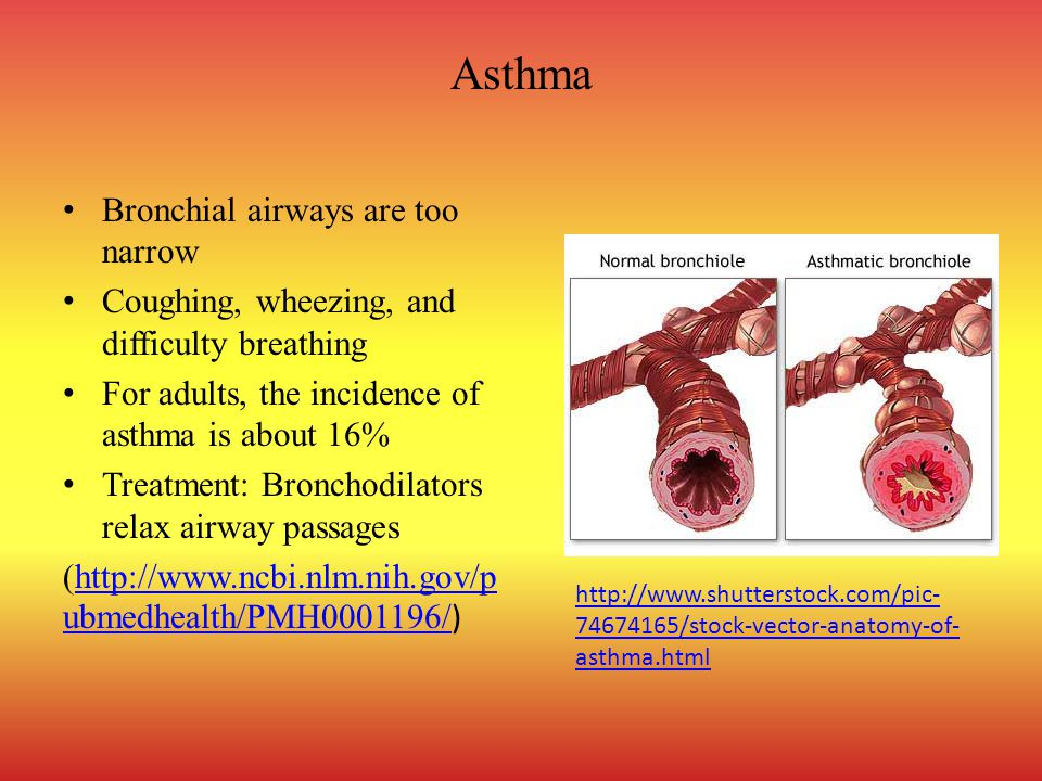 Asthma Bronchial airways are too narrow
