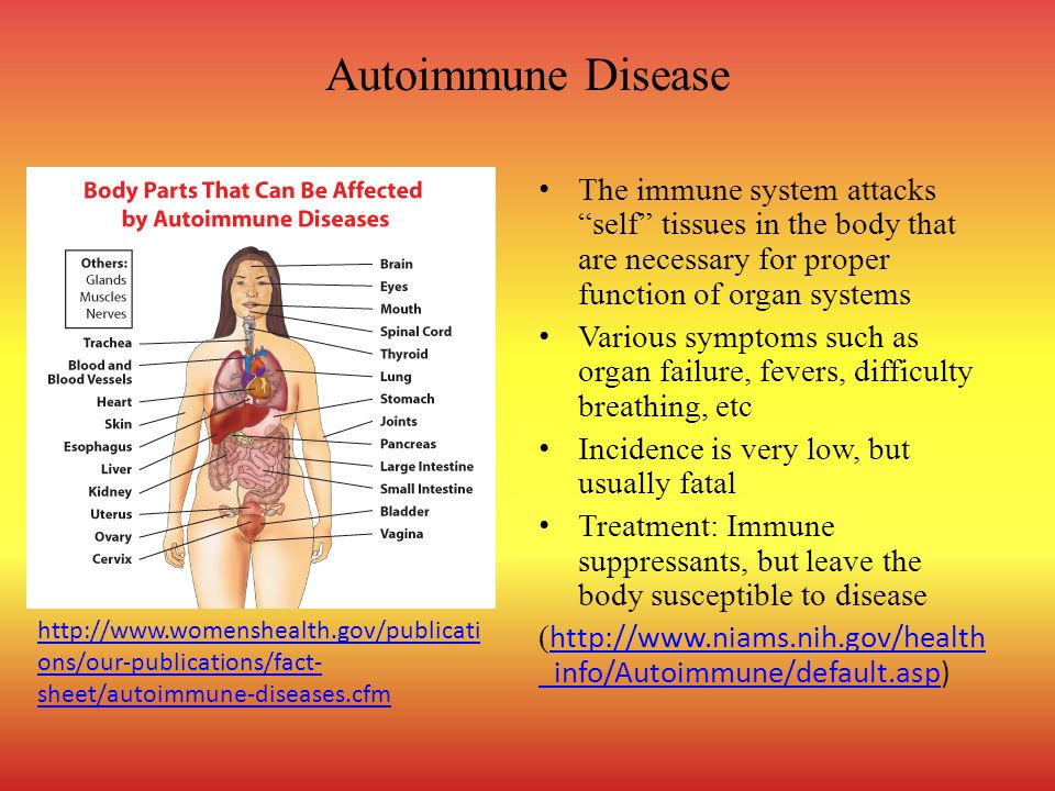 Autoimmune Disease The immune system attacks self tissues in the body that are necessary for proper function of organ systems.