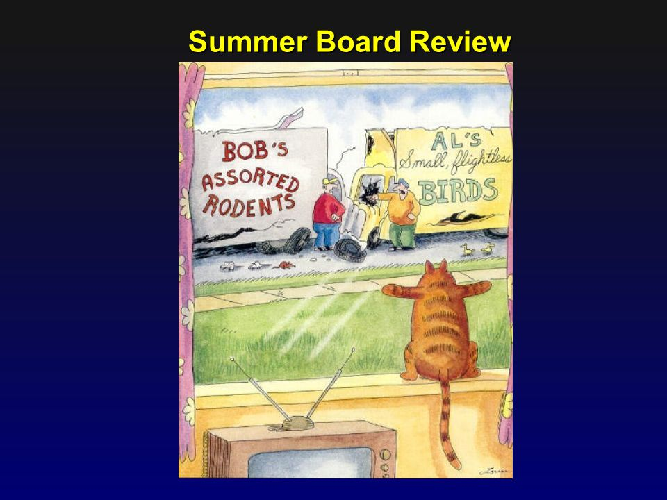 Summer Board Review