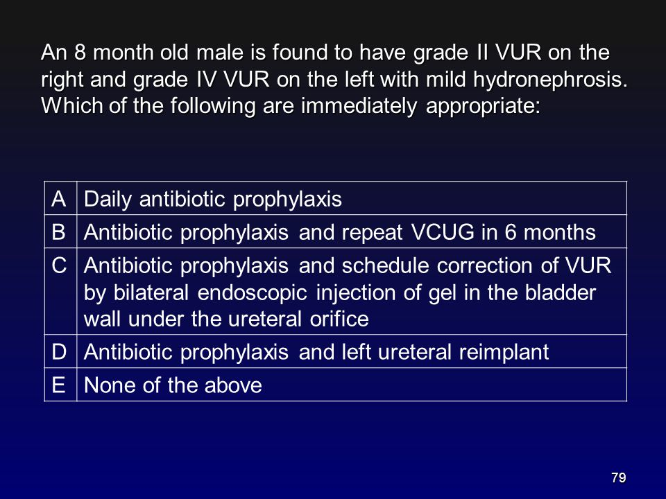 An 8 month old male is found to have grade II VUR on the right and grade IV VUR on the left with mild hydronephrosis. Which of the following are immediately appropriate: