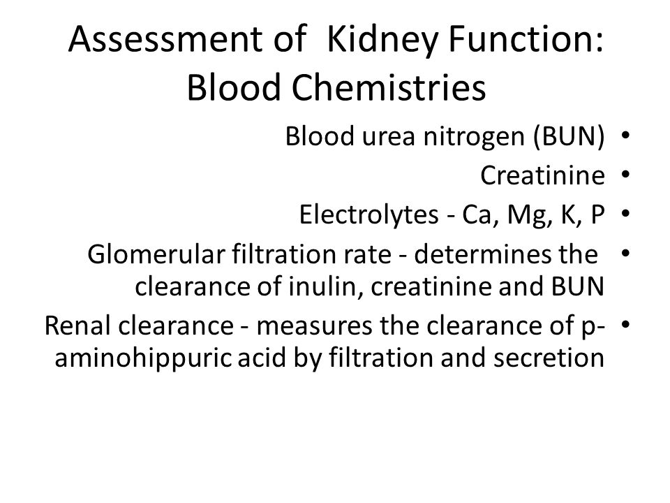 Assessment of Kidney Function: Blood Chemistries