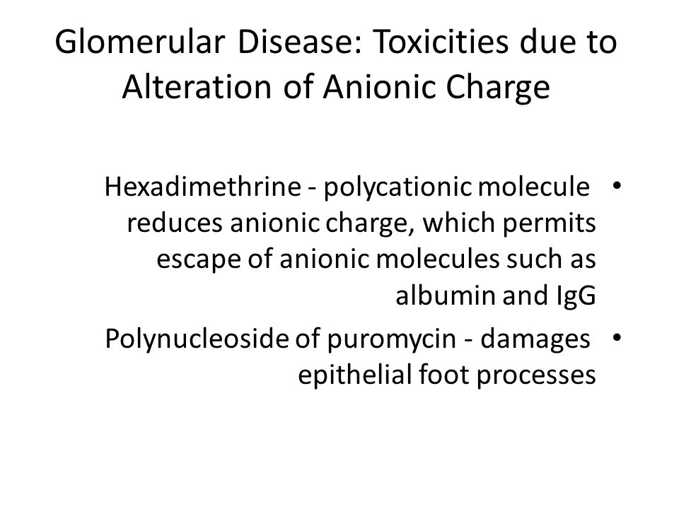 Glomerular Disease: Toxicities due to Alteration of Anionic Charge