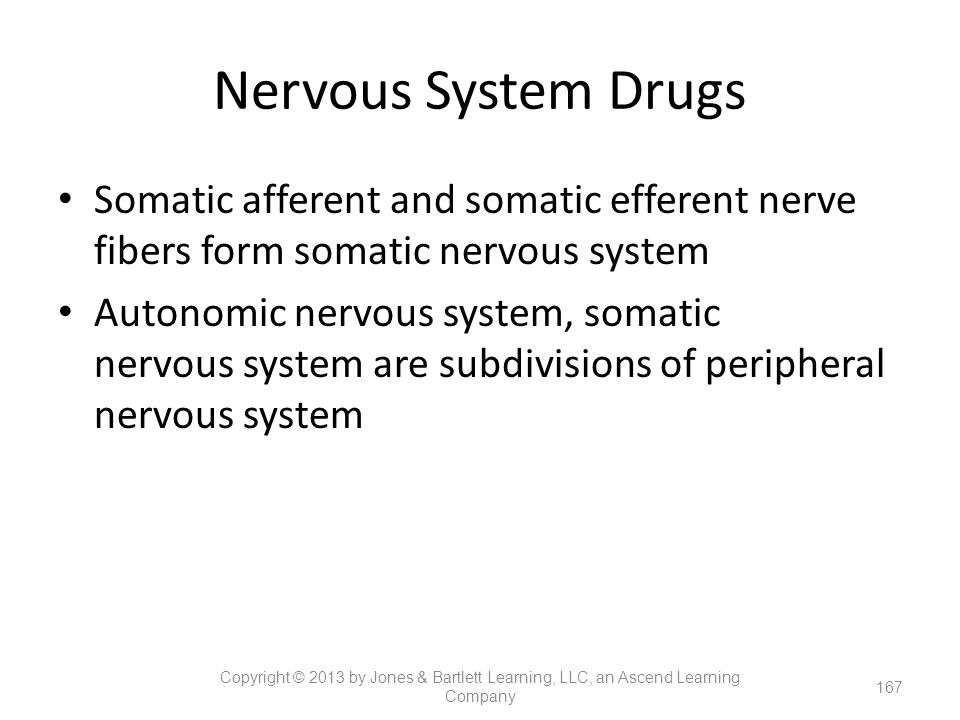 Nervous System Drugs Somatic afferent and somatic efferent nerve fibers form somatic nervous system.