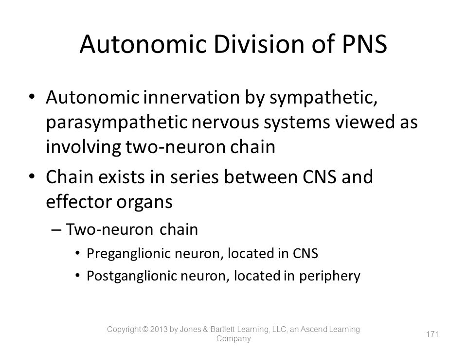 Autonomic Division of PNS
