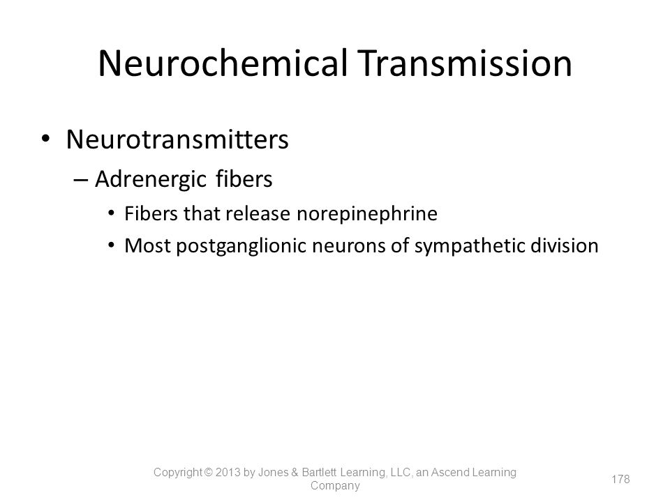 Neurochemical Transmission