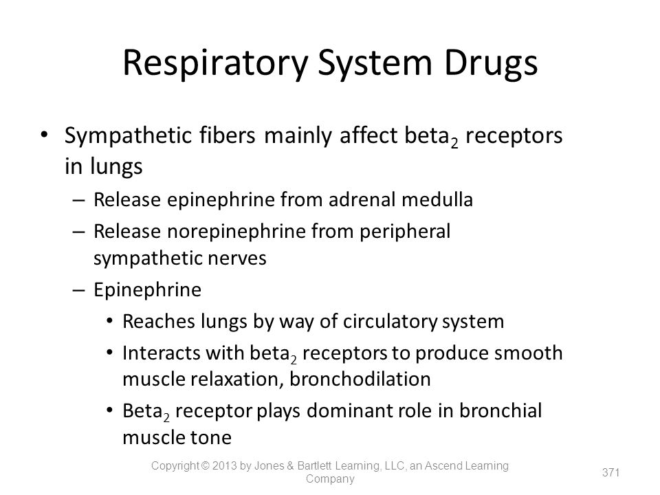 Respiratory System Drugs