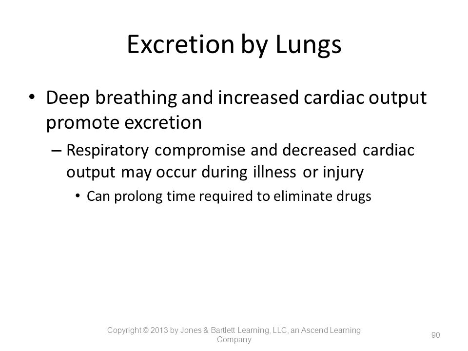 Excretion by Lungs Deep breathing and increased cardiac output promote excretion.