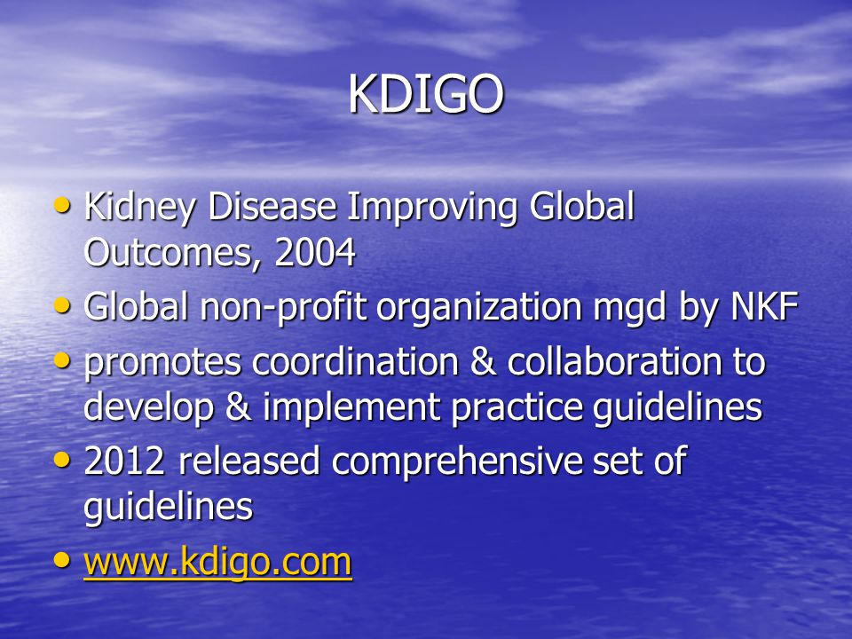 KDIGO Kidney Disease Improving Global Outcomes, 2004