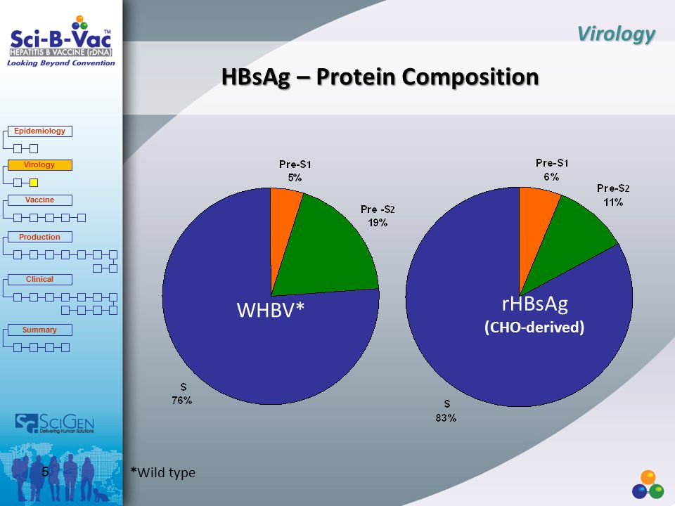 HBsAg – Protein Composition