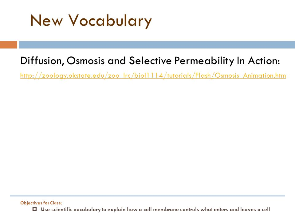 New Vocabulary Diffusion, Osmosis and Selective Permeability In Action: