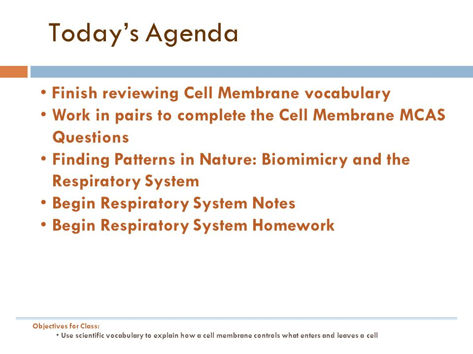 Today's Agenda Finish reviewing Cell Membrane vocabulary