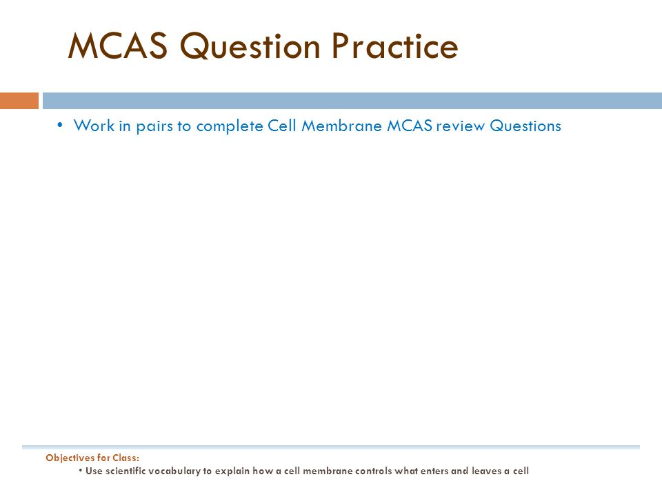MCAS Question Practice