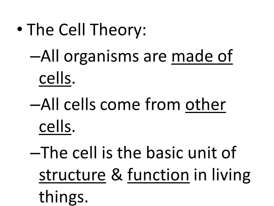 The Cell Theory: All organisms are made of cells. All cells come from other cells.