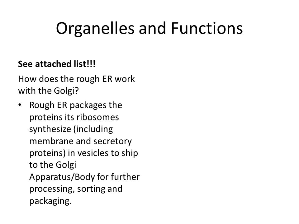 Organelles and Functions