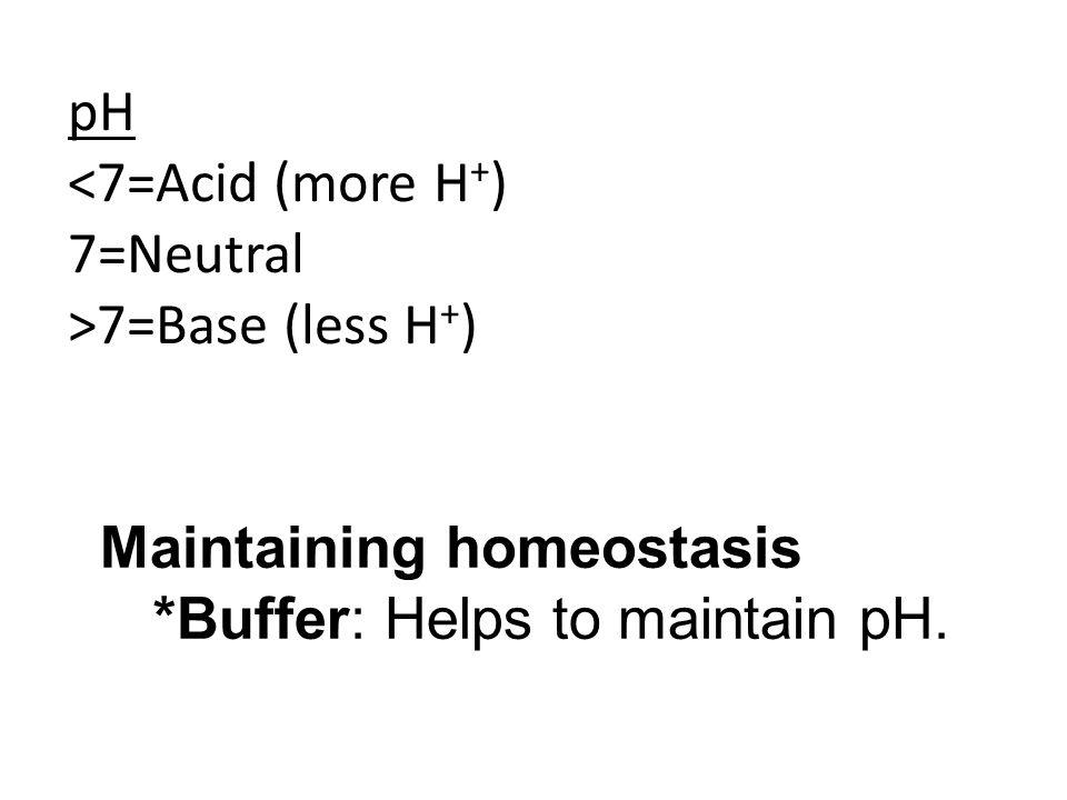 pH <7=Acid (more H+) 7=Neutral. >7=Base (less H+) Maintaining homeostasis.
