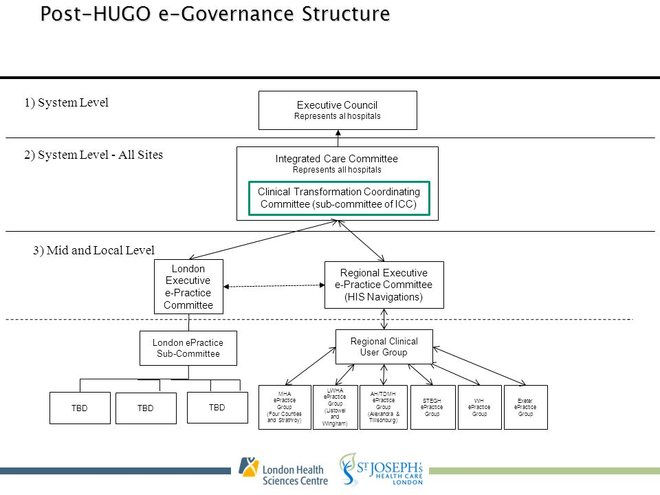 Post-HUGO e-Governance Structure