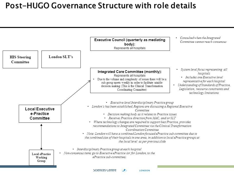 Post-HUGO Governance Structure with role details