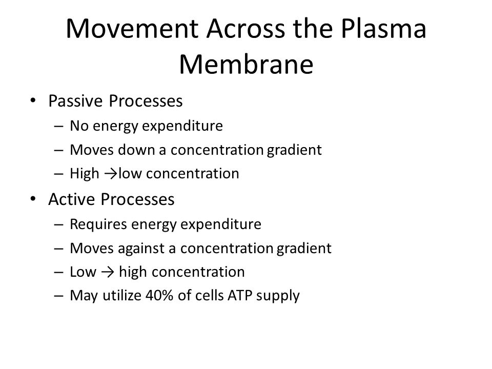 Movement Across the Plasma Membrane