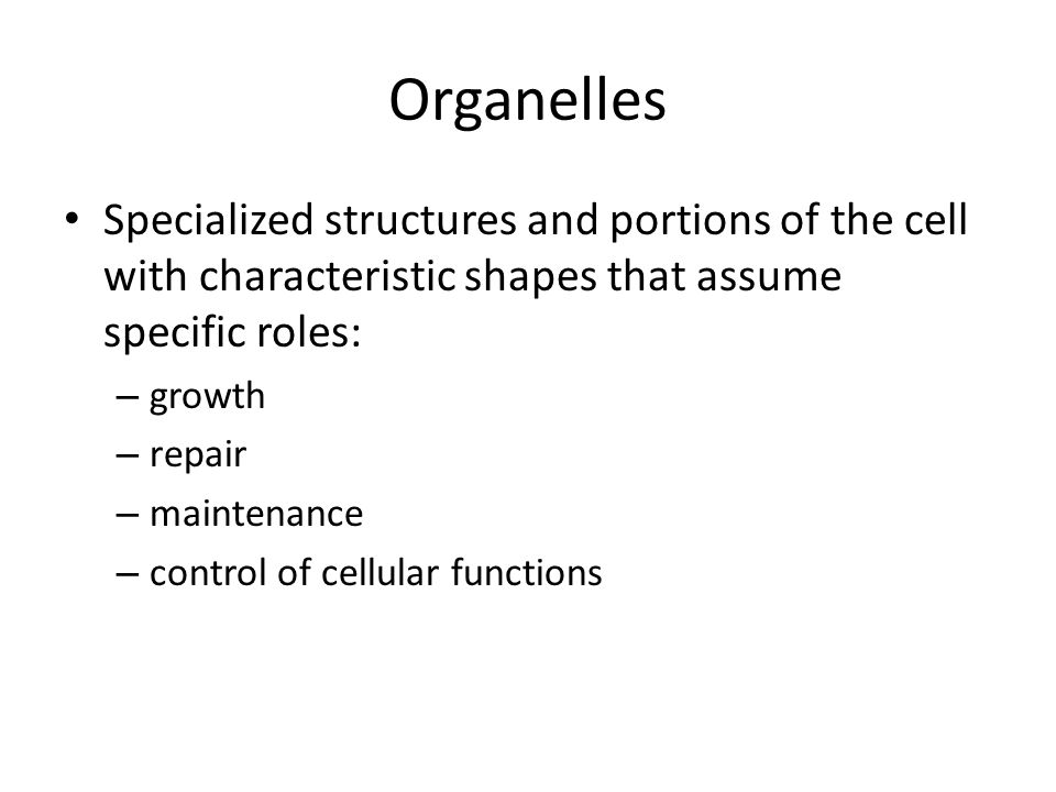 Organelles Specialized structures and portions of the cell with characteristic shapes that assume specific roles: