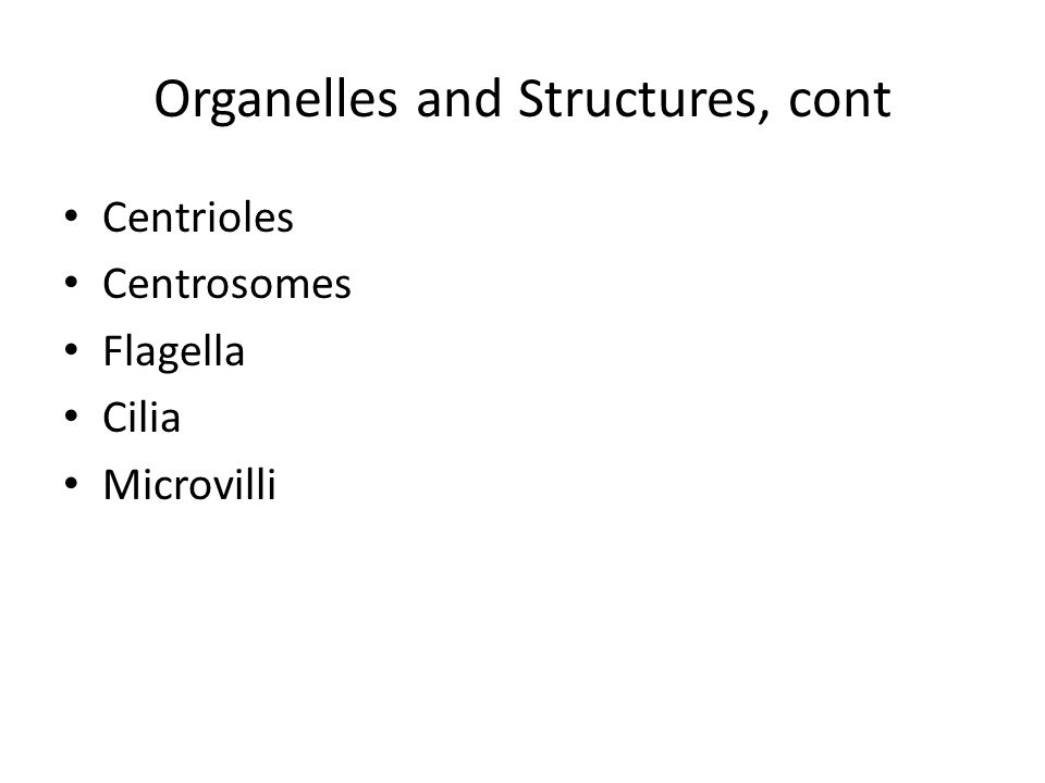 Organelles and Structures, cont