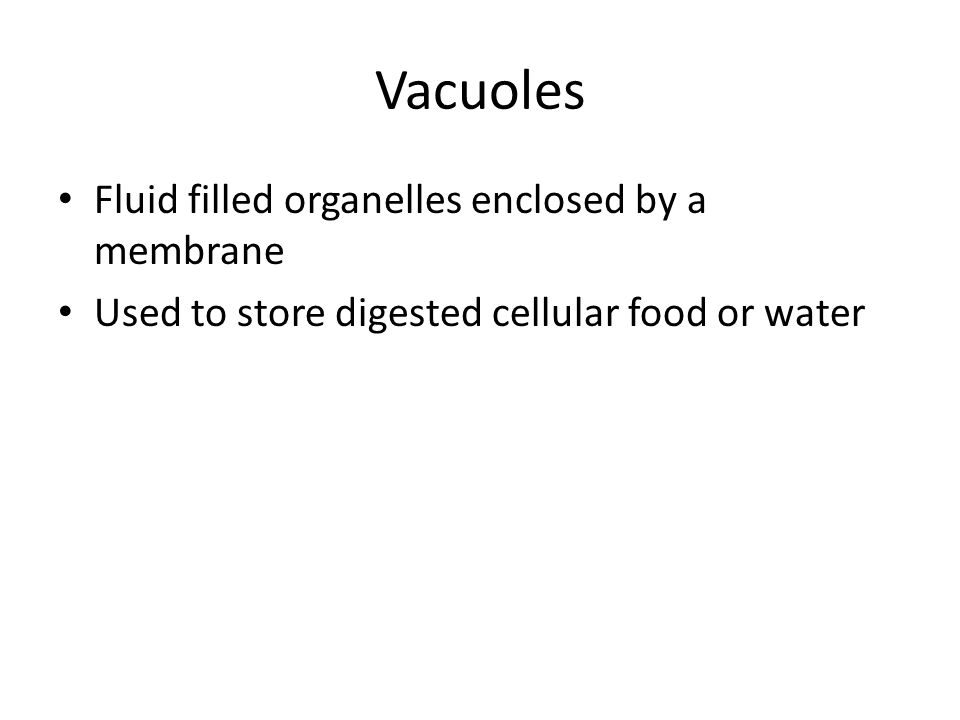 Vacuoles Fluid filled organelles enclosed by a membrane