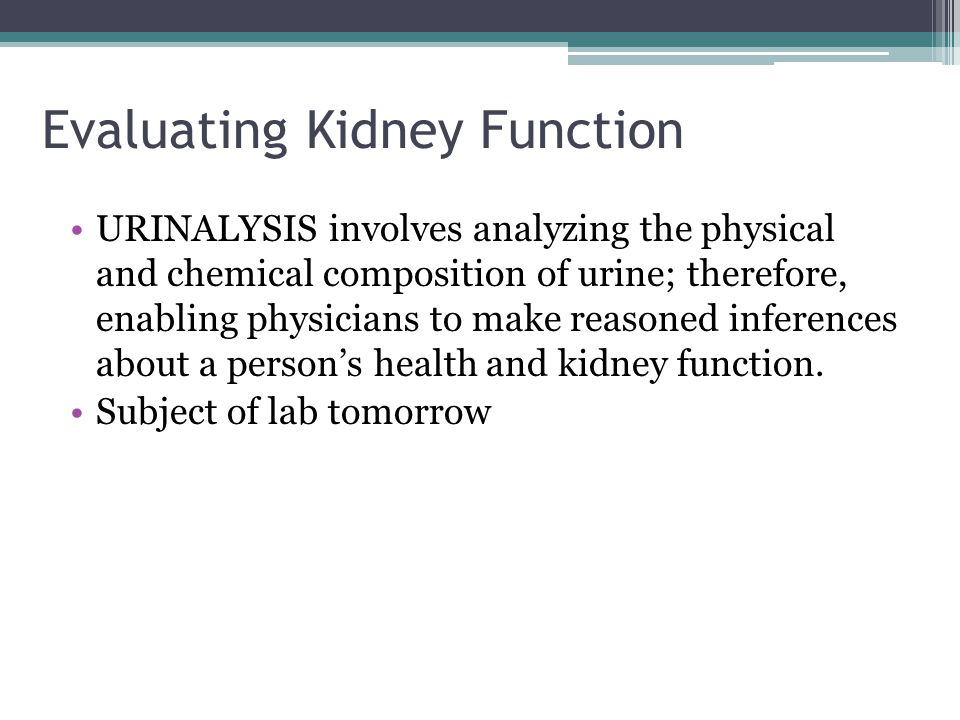 Evaluating Kidney Function