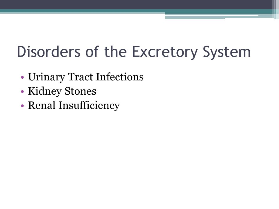Disorders of the Excretory System