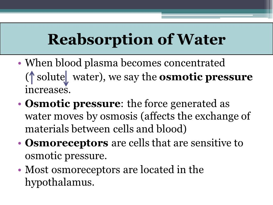 Reabsorption of Water When blood plasma becomes concentrated