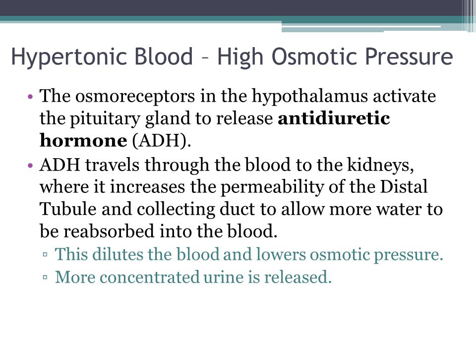 Hypertonic Blood – High Osmotic Pressure