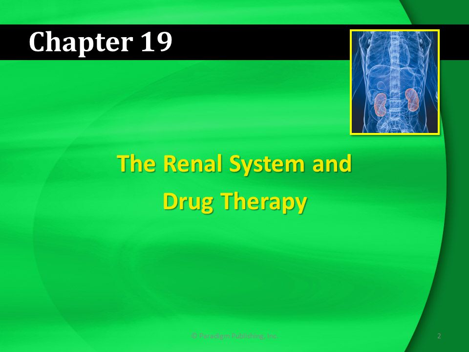The Renal System and Drug Therapy